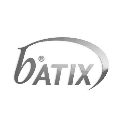 Batix Software GmbH