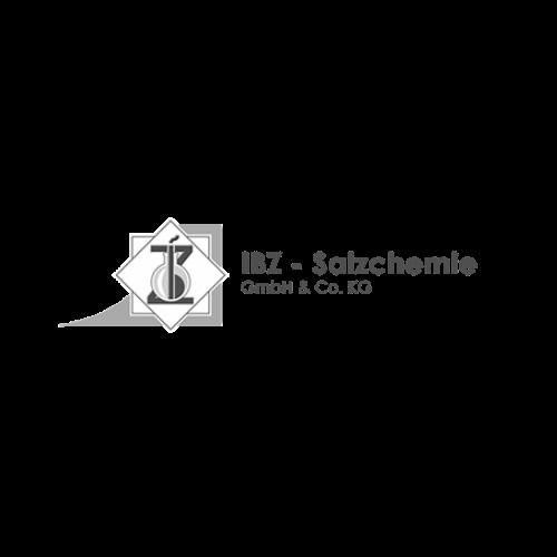 IBZ-Salzchemie GmbH & Ko KG